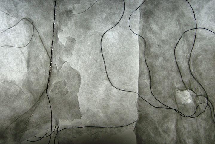 lili maya